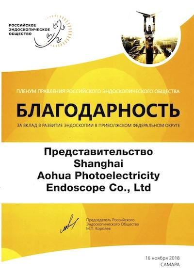 Пленум Правления Российского Эндоскопического Общества (итоги)